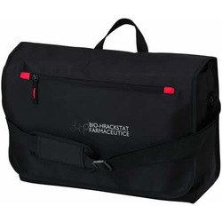 City Dispatch Bag