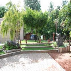 Tree and Plantations Transplantation Services