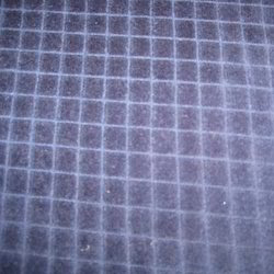 Knitted Cotton Velour Check Fabric