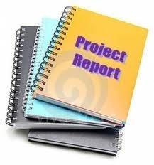 Food Industry Project Reports