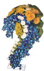 A Grand Spectacular Cascade Of Orcids Blue Orchids, Yellow Gesbe