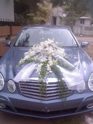 Car decoration services in ahmedabad car decoration junglespirit Image collections