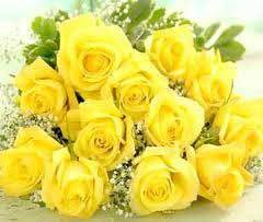 Yellow rose find wholesale price for yellow rose in india yellow rose flowers mightylinksfo