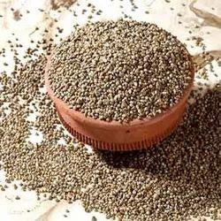 Green Millets (Bajara)