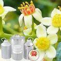 Frankincense Hydrosol  Oil