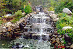 Water Gardens Service