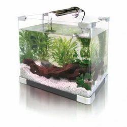 Small Fish Aquariums