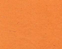 Coated Bagasse Handmade Papers