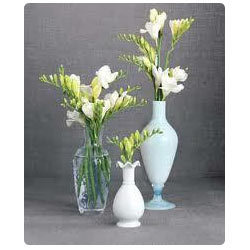 very attractive design flower vase. Flower Vases Acrylic Vase  Manufacturers Suppliers of Phooldan