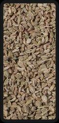 Bishope Seeds