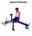 Leg Curl & Extension