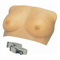 Breast Examination Model ( BEP/F7A )
