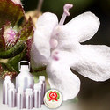 TThyme CT linalool Oil - Certified Organic