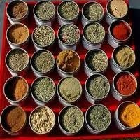 Grounded Spices
