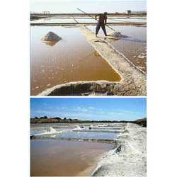 LDPE Plastic Sheets For Salt Pans Sheet