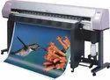 Customized Digital Printing Service