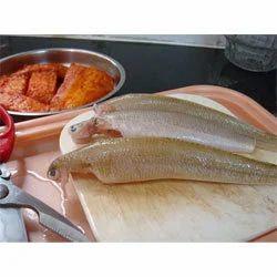 Lady Finger Fish