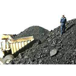 Coal Bidding Service