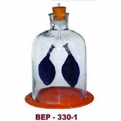 Lung Demonstration Model ( BEP-330-1 )