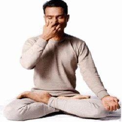 Pranayam Yoga Services in Gurgaon