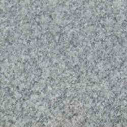 Polished Shell White Granite Slab, For Flooring and Countertops, Thickness: 20-25 mm