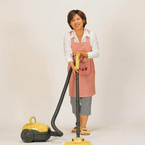 Picture of a house maid