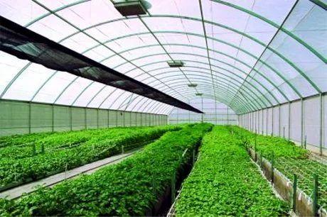 Silpaulin Tarpaulins Agricultural Pond Liner Manufacturer From Secunderabad