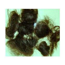 Wast Hair