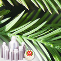 Cypress Leaf