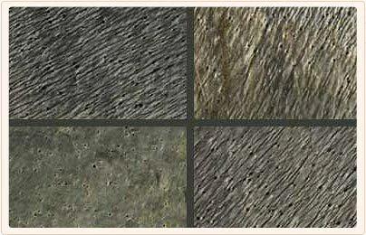 Jeera Green Slate Polished Slate Stone