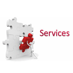 Customize Solution & Services