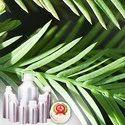 Cypress Leaf Oil