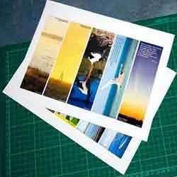 xerox items black white printouts manufacturer from mumbai - Picture Printouts