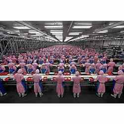 Factory and Manufacturing Labours