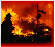 Fire Safety Security Services