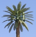 Frp Palm Tree Camouflage Telecom Tower, Usage: Industrial And Commercial