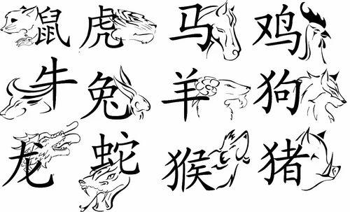 Chinese Interpreter For Machine Installation