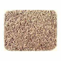 Cumin Seeds, जीरा बीज, Spices | Khari Baoli, New Delhi
