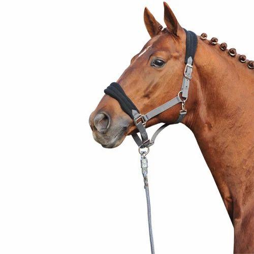 Color Choice Adjustment Buckles on Both Cheeks Horse Nylon One Ear Headstall Bridle 2 Ply Nylon