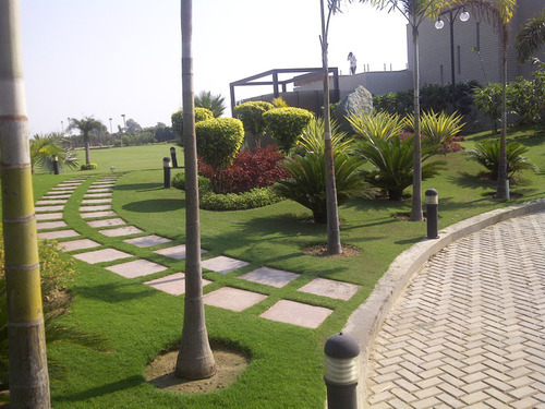 Farm House Landscaping Designs In Vasant Kunj New Delhi