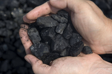 Sub- Bituminous Coal Suppliers