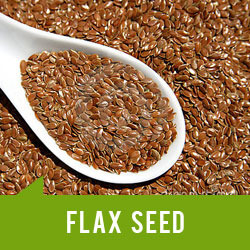 Flax Seeds Ifa Exporters Manufacturer In Pollachi Id 3652904697