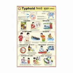 Typhoid Charts