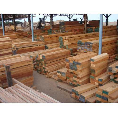 Malaysian Sal Wood View Specifications Details Of Sal Wood By