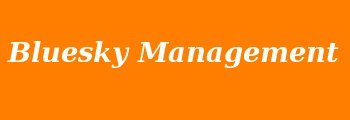 Bluesky Management Services