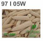 White Corn Hybrid