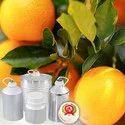 Orange Blossom Hydrosol