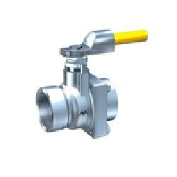 Microfinish Cast Two Piece Flanged Valve
