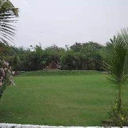 Garden Consultancy Service