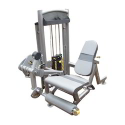 Polished Leg Extention Machine